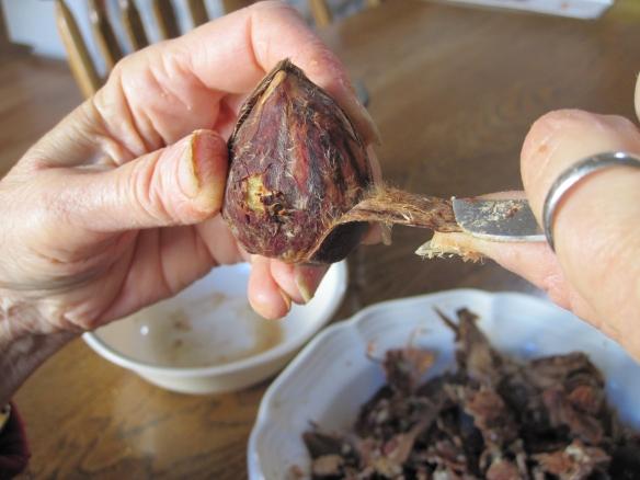 Peeling shell 4